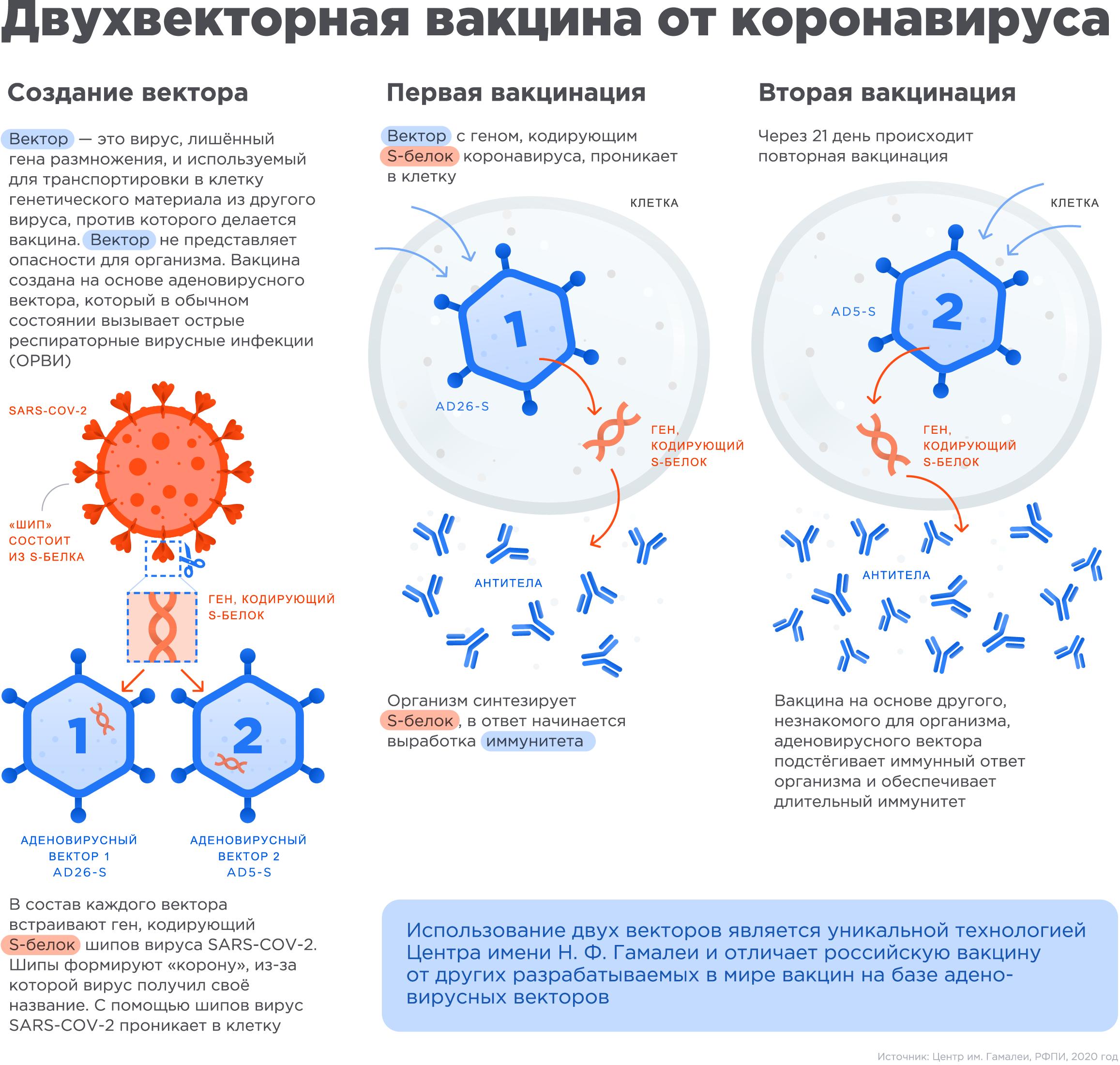 Двухвекторная вакцина от коронавируса